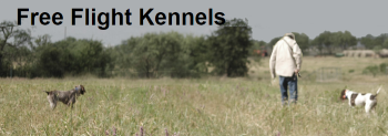 Free Flight Kennels